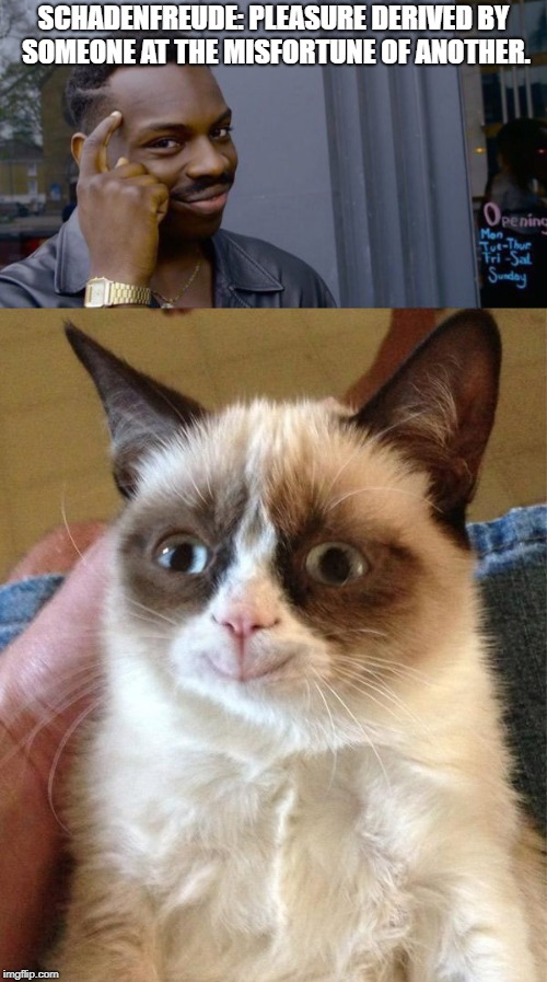 Grumpy cat's theme word | SCHADENFREUDE: PLEASURE DERIVED BY SOMEONE AT THE MISFORTUNE OF ANOTHER. | image tagged in grumpy cat,funny,funny memes | made w/ Imgflip meme maker