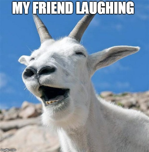 Laughing Goat | MY FRIEND LAUGHING | image tagged in memes,laughing goat | made w/ Imgflip meme maker