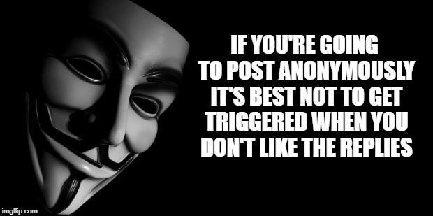 Anonymous | IF YOU'RE GOING TO POST ANONYMOUSLY IT'S BEST NOT TO GET TRIGGERED WHEN YOU DON'T LIKE THE REPLIES | image tagged in anonymous | made w/ Imgflip meme maker