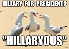 "HILLARY  FOR  PRESIDENT? ""HILLARYOUS"" 
