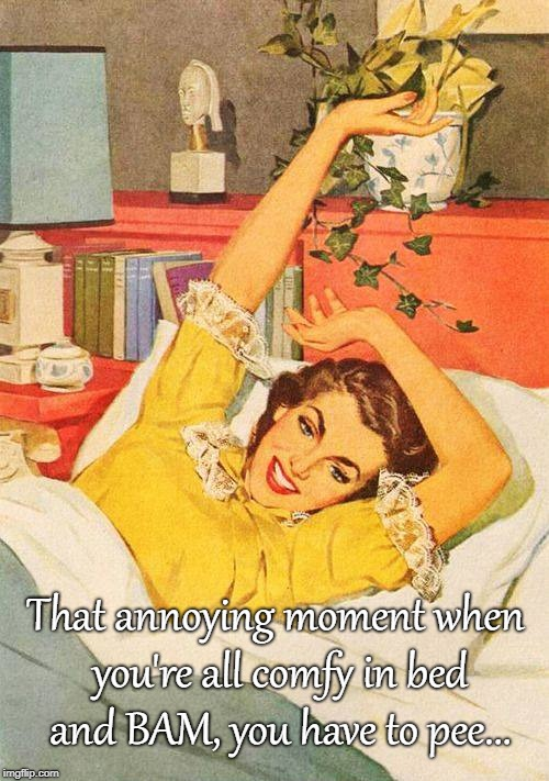 Just when you get comfy in bed... | That annoying moment when you're all comfy in bed and BAM, you have to pee... | image tagged in annoying,comfy,bed,pee | made w/ Imgflip meme maker