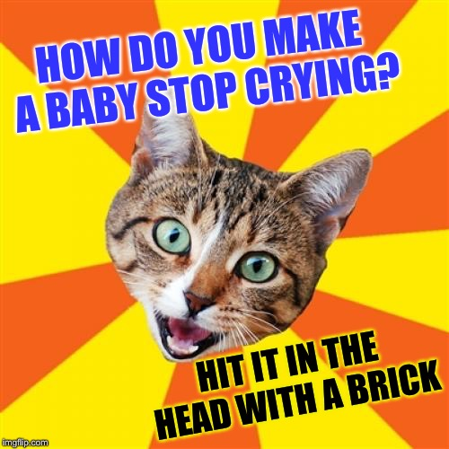 Bad Advice Cat Meme | HOW DO YOU MAKE A BABY STOP CRYING? HIT IT IN THE HEAD WITH A BRICK | image tagged in memes,bad advice cat | made w/ Imgflip meme maker