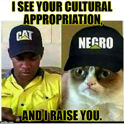 Stakes have just been upped. | I SEE YOUR CULTURAL APPROPRIATION, AND I RAISE YOU. | image tagged in grumpy cat,cultural appropriation | made w/ Imgflip meme maker