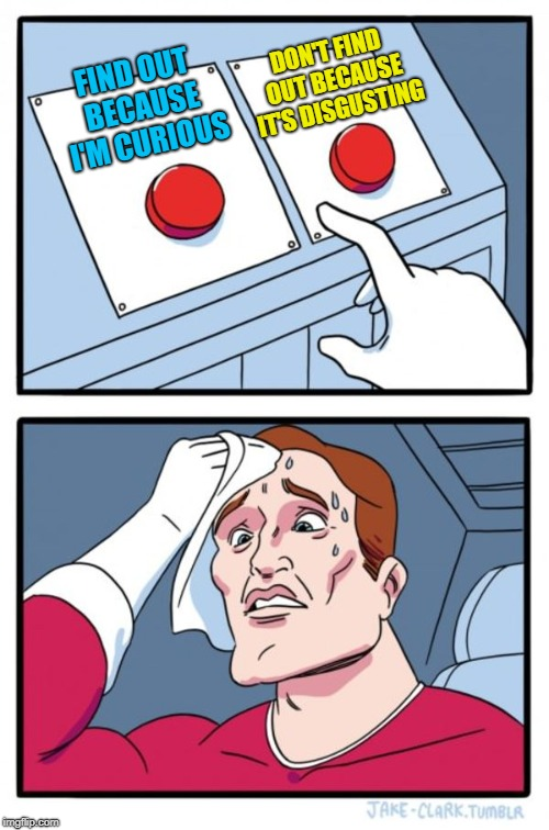 Two Buttons Meme | FIND OUT BECAUSE I'M CURIOUS DON'T FIND OUT BECAUSE IT'S DISGUSTING | image tagged in memes,two buttons | made w/ Imgflip meme maker
