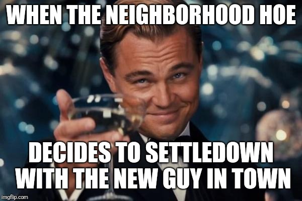 Leonardo Dicaprio Cheers Meme | WHEN THE NEIGHBORHOOD HOE DECIDES TO SETTLEDOWN WITH THE NEW GUY IN TOWN | image tagged in memes,leonardo dicaprio cheers | made w/ Imgflip meme maker