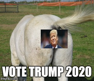 Vote trump | VOTE TRUMP 2020 | image tagged in trump 2020,donald trump | made w/ Imgflip meme maker