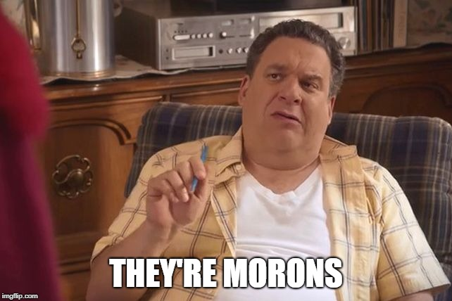 Murray Goldberg | THEY'RE MORONS | image tagged in murray goldberg | made w/ Imgflip meme maker