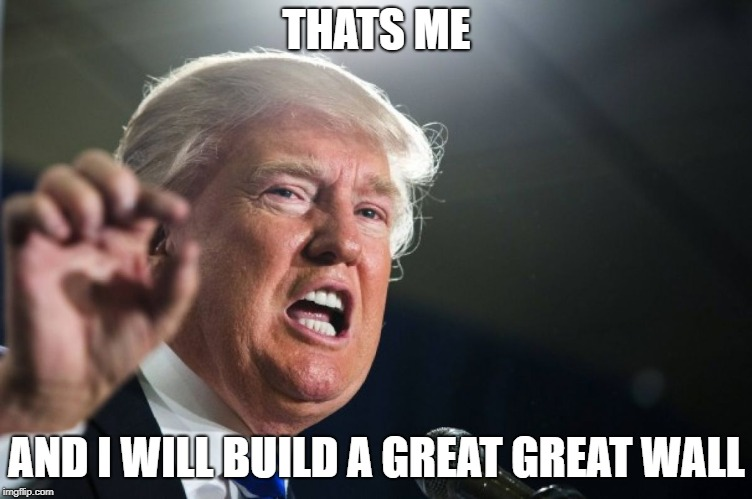 donald trump | THATS ME AND I WILL BUILD A GREAT GREAT WALL | image tagged in donald trump | made w/ Imgflip meme maker