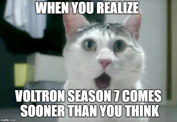 Yes, I also do Voltron. I am a disaster. | WHEN YOU REALIZE VOLTRON SEASON 7 COMES SOONER THAN YOU THINK | image tagged in memes,voltron,omg cat | made w/ Imgflip meme maker