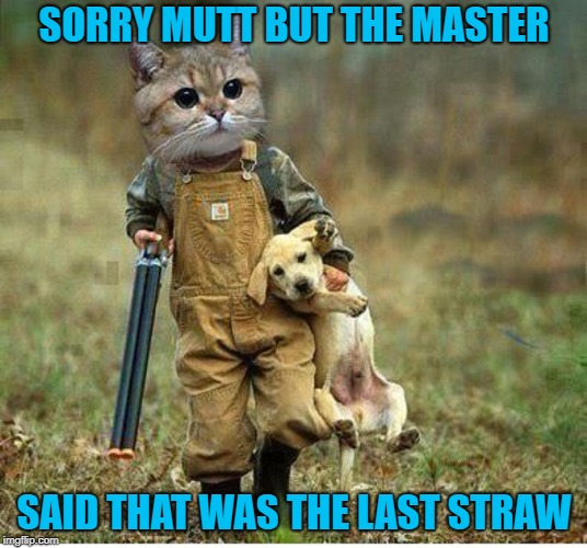 SORRY MUTT BUT THE MASTER SAID THAT WAS THE LAST STRAW | made w/ Imgflip meme maker
