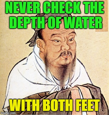 wise confusius | NEVER CHECK THE DEPTH OF WATER WITH BOTH FEET | image tagged in wise confusius,memes,funny,logic | made w/ Imgflip meme maker