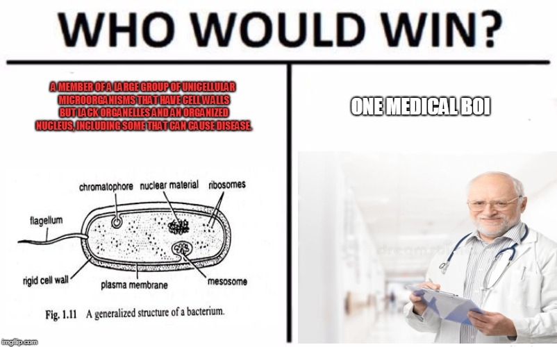 Who Would Win? Meme | A MEMBER OF A LARGE GROUP OF UNICELLULAR MICROORGANISMS THAT HAVE CELL WALLS BUT LACK ORGANELLES AND AN ORGANIZED NUCLEUS, INCLUDING SOME TH | image tagged in memes,who would win | made w/ Imgflip meme maker
