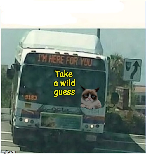 Take a wild guess | made w/ Imgflip meme maker