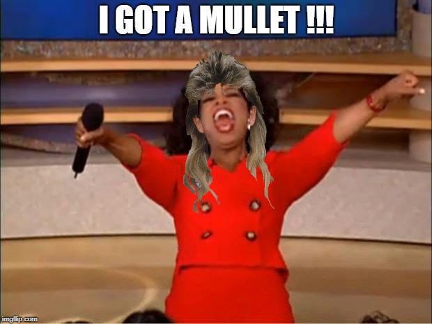 Oprah You Get A Meme | I GOT A MULLET !!! | image tagged in memes,oprah you get a | made w/ Imgflip meme maker