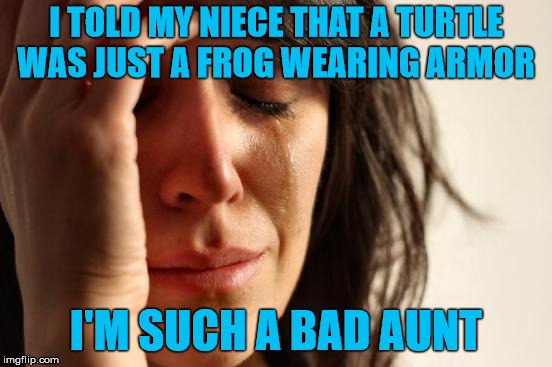 First World Problems Meme | I TOLD MY NIECE THAT A TURTLE WAS JUST A FROG WEARING ARMOR I'M SUCH A BAD AUNT | image tagged in memes,first world problems | made w/ Imgflip meme maker