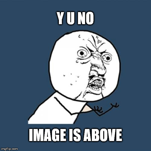 Y U No Meme | Y U NO IMAGE IS ABOVE | image tagged in memes,y u no | made w/ Imgflip meme maker