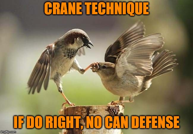 I miss Mr. Miyagi | CRANE TECHNIQUE IF DO RIGHT, NO CAN DEFENSE | image tagged in birds shut up,memes,crane technique,crane kick,karate kid,mr miyagi | made w/ Imgflip meme maker