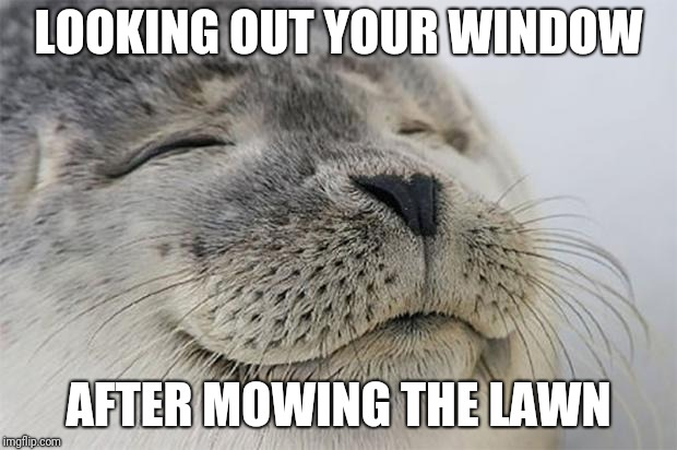 Hard work pays off | LOOKING OUT YOUR WINDOW AFTER MOWING THE LAWN | image tagged in memes,satisfied seal,grass,lawnmower | made w/ Imgflip meme maker