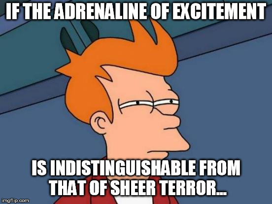 Futurama Fry Meme | IF THE ADRENALINE OF EXCITEMENT IS INDISTINGUISHABLE FROM THAT OF SHEER TERROR... | image tagged in memes,futurama fry | made w/ Imgflip meme maker
