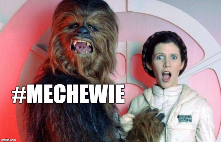 Star Wars Hanky Panky | #MECHEWIE | image tagged in metoo,mechewie,star wars,chewbacca,princess leia,princess leia puns | made w/ Imgflip meme maker