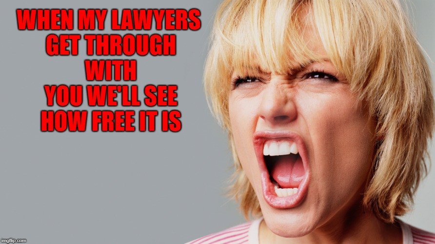WHEN MY LAWYERS GET THROUGH WITH YOU WE'LL SEE HOW FREE IT IS | made w/ Imgflip meme maker