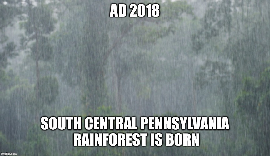 AD 2018 SOUTH CENTRAL PENNSYLVANIA RAINFOREST IS BORN | image tagged in rainforest,too much rain,pennsylvania | made w/ Imgflip meme maker