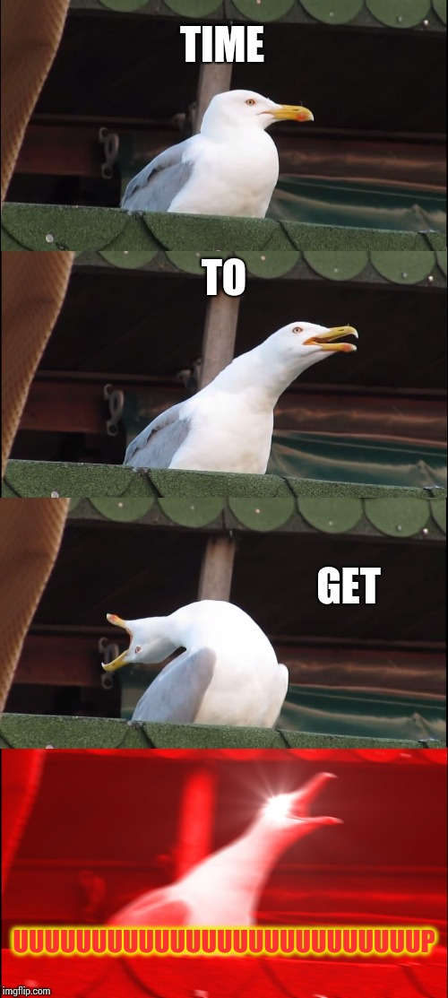 What could be an alarm clock. | TIME TO GET UUUUUUUUUUUUUUUUUUUUUUUUUUP | image tagged in memes,inhaling seagull | made w/ Imgflip meme maker