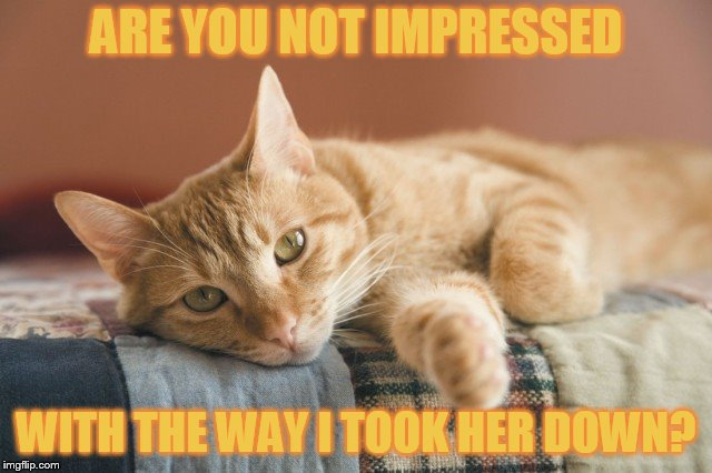ARE YOU NOT IMPRESSED WITH THE WAY I TOOK HER DOWN? | made w/ Imgflip meme maker