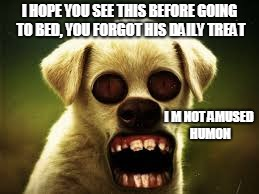 not haunting ;) | I HOPE YOU SEE THIS BEFORE GOING TO BED, YOU FORGOT HIS DAILY TREAT I M NOT AMUSED HUMON | image tagged in doggos,spooky,disturbing | made w/ Imgflip meme maker
