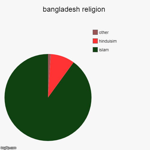 bangladesh religion | islam, hinduisim, other | image tagged in pie charts | made w/ Imgflip pie chart maker