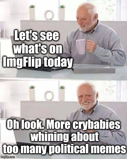 Don't like a meme? Scroll on! | Let's see what's on ImgFlip today Oh look. More crybabies whining about too many political memes | image tagged in memes,hide the pain harold | made w/ Imgflip meme maker