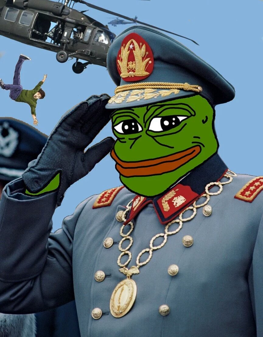 Image result for pepe salute