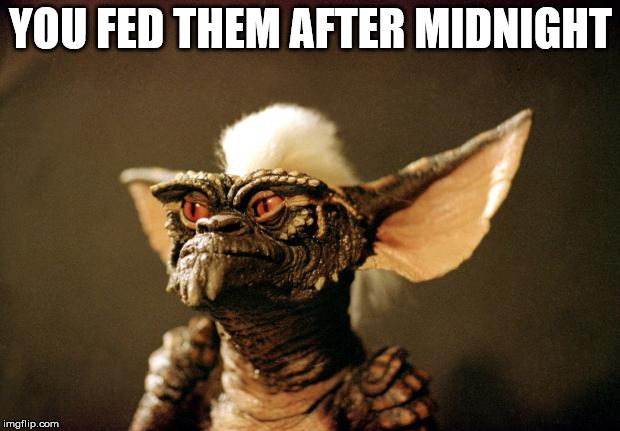 gremlins | YOU FED THEM AFTER MIDNIGHT | image tagged in gremlins | made w/ Imgflip meme maker