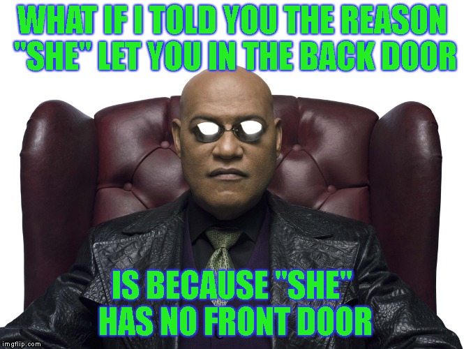 "WHAT IF I TOLD YOU THE REASON ""SHE"" LET YOU IN THE BACK DOOR IS BECAUSE ""SHE"" HAS NO FRONT DOOR 