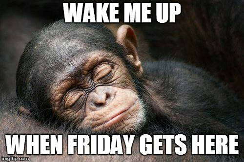 WAKE ME UP WHEN FRIDAY GETS HERE | image tagged in chimp nap | made w/ Imgflip meme maker