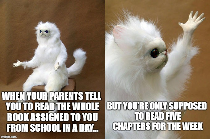 Parent Logic |  BUT YOU'RE ONLY SUPPOSED TO READ FIVE CHAPTERS FOR THE WEEK; WHEN YOUR PARENTS TELL YOU TO READ THE WHOLE BOOK ASSIGNED TO YOU FROM SCHOOL IN A DAY... | image tagged in memes,persian cat room guardian,parents,homework,books | made w/ Imgflip meme maker