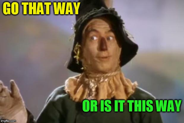 Scarecrow | GO THAT WAY OR IS IT THIS WAY | image tagged in scarecrow | made w/ Imgflip meme maker