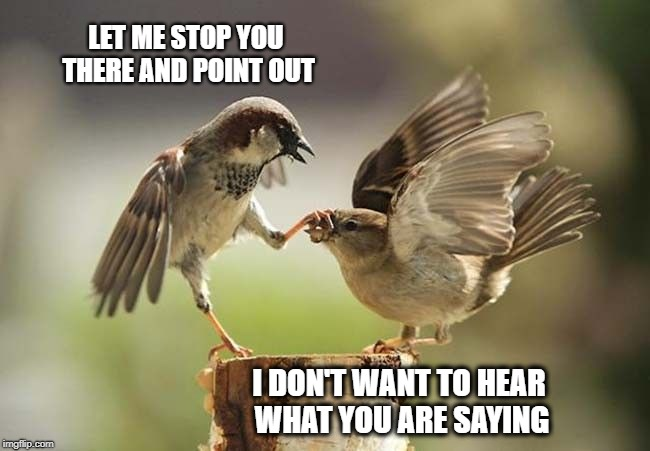 Birds shut up | LET ME STOP YOU THERE AND POINT OUT I DON'T WANT TO HEAR WHAT YOU ARE SAYING | image tagged in birds shut up,hear no evil,i don't care,don't do it,jack sparrow you have heard of me,can you hear me now | made w/ Imgflip meme maker