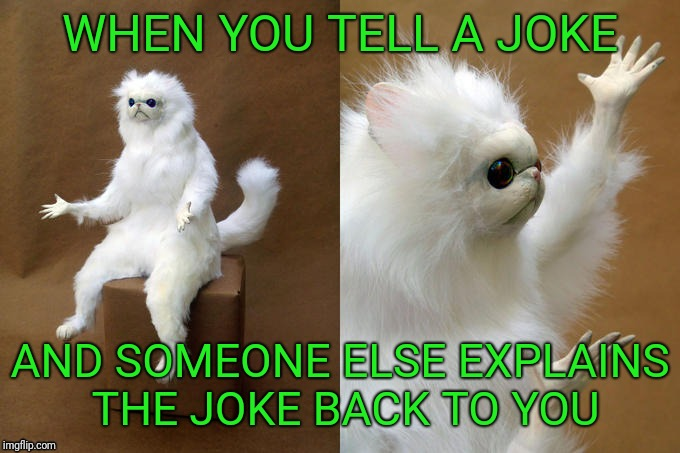 Persian Cat Room Guardian | WHEN YOU TELL A JOKE AND SOMEONE ELSE EXPLAINS THE JOKE BACK TO YOU | image tagged in memes,persian cat room guardian | made w/ Imgflip meme maker