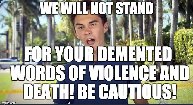 David Hogg | WE WILL NOT STAND FOR YOUR DEMENTED WORDS OF VIOLENCE AND DEATH! BE CAUTIOUS! | image tagged in david hogg | made w/ Imgflip meme maker