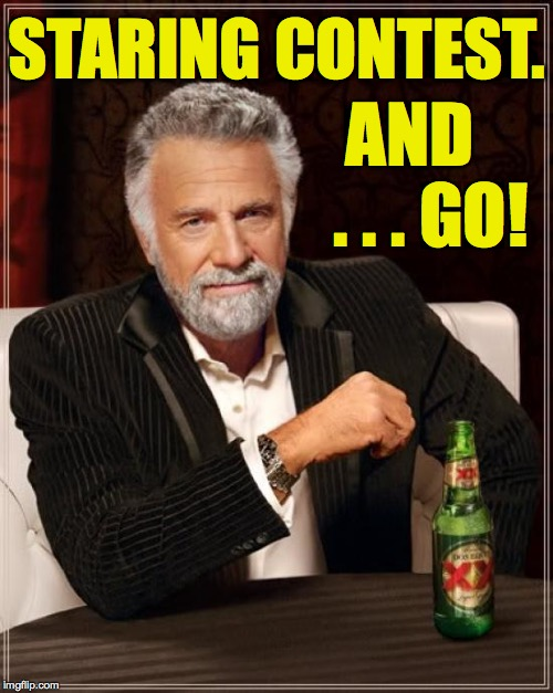 The Most Interesting Man In The World Meme | STARING CONTEST. AND   . . . GO! | image tagged in memes,the most interesting man in the world,staring contest | made w/ Imgflip meme maker