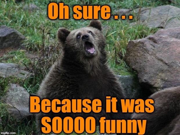 Sarcastic Bear | Oh sure . . . Because it was SOOOO funny | image tagged in sarcastic bear | made w/ Imgflip meme maker