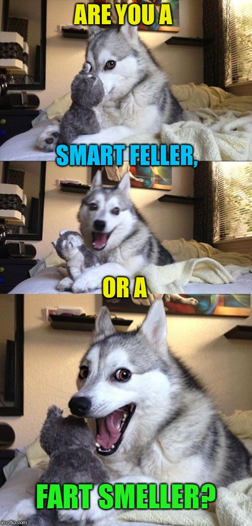 ARE YOU A FART SMELLER? SMART FELLER, OR A | made w/ Imgflip meme maker