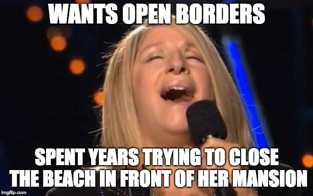 Someone almost killed her when she was lying on the beach. They thought her nose was a 2 car garage. | WANTS OPEN BORDERS SPENT YEARS TRYING TO CLOSE THE BEACH IN FRONT OF HER MANSION | image tagged in barbara streisand | made w/ Imgflip meme maker