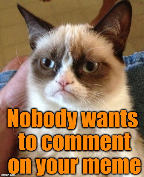 Grumpy Cat Meme | Nobody wants to comment on your meme | image tagged in memes,grumpy cat | made w/ Imgflip meme maker