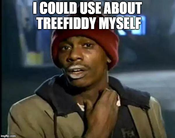 Y'all Got Any More Of That Meme | I COULD USE ABOUT TREEFIDDY MYSELF | image tagged in memes,y'all got any more of that | made w/ Imgflip meme maker