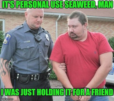 man get arrested | IT'S PERSONAL USE SEAWEED, MAN I WAS JUST HOLDING IT FOR A FRIEND | image tagged in man get arrested | made w/ Imgflip meme maker