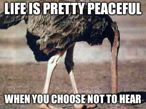LIFE IS PRETTY PEACEFUL WHEN YOU CHOOSE NOT TO HEAR | image tagged in avoiding ostrich | made w/ Imgflip meme maker
