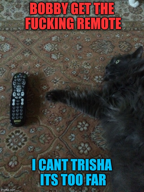 BOBBY GET THE F**KING REMOTE I CANT TRISHA ITS TOO FAR | image tagged in its too far | made w/ Imgflip meme maker