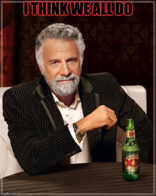 The Most Interesting Man In The World Meme | I THINK WE ALL DO | image tagged in memes,the most interesting man in the world | made w/ Imgflip meme maker